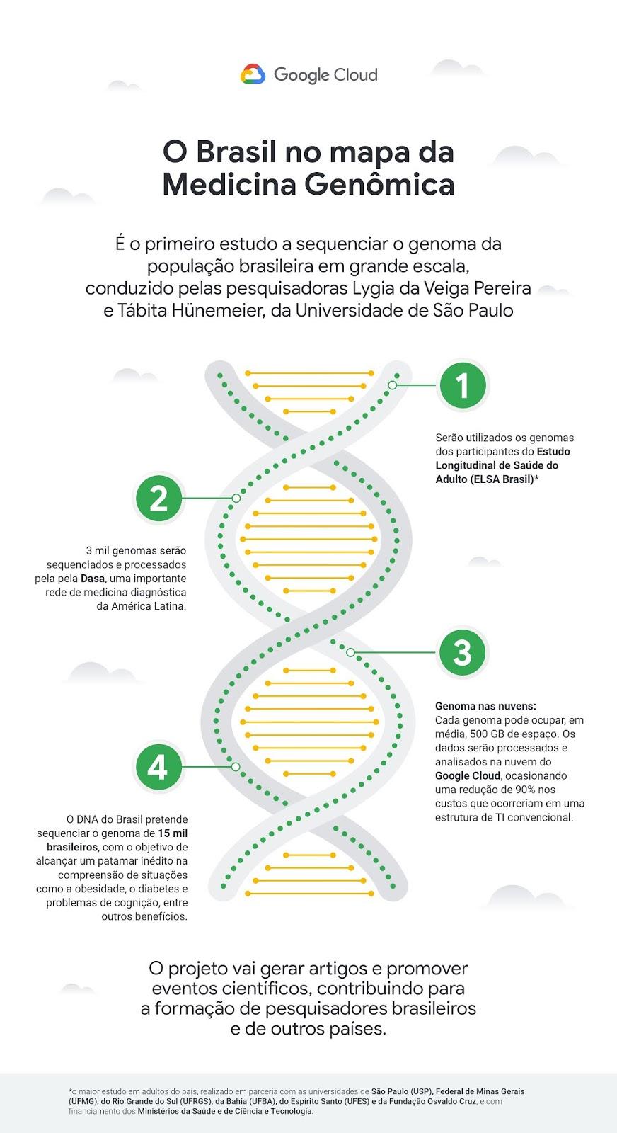 DNA Brasileiro - Infografico